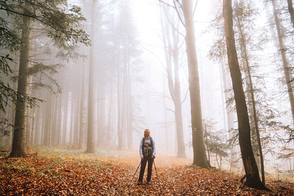 Jesienny las w Myślenicach