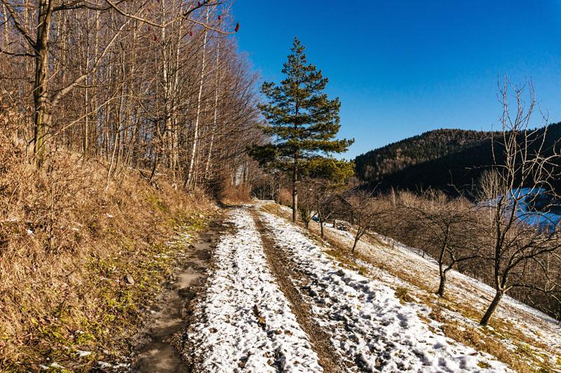 Droga do Jaworznej