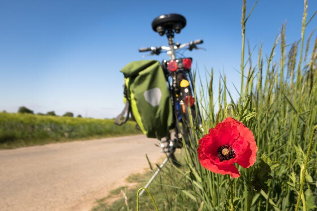 Rower na szlaku Green Velo