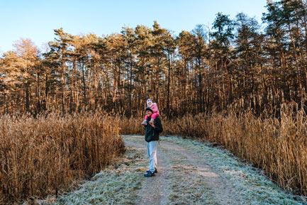 Lasy Wierzchosławickie koło Tarnowa