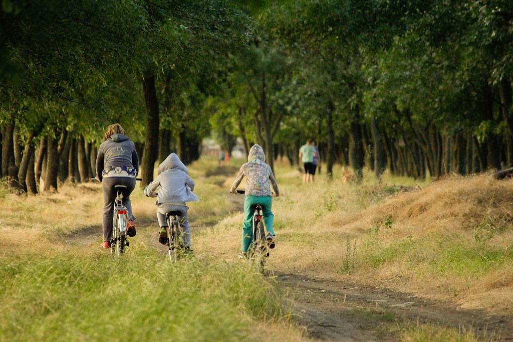 Rodzinny szlak rowerowy Green Velo