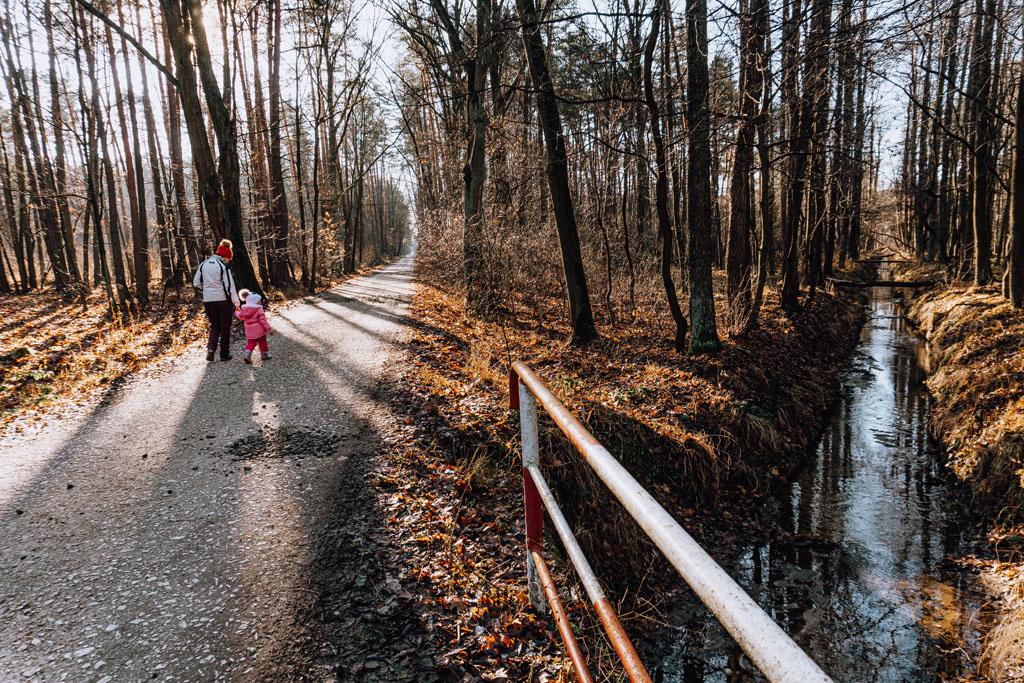 Ścieżka zdrowia Tarnów
