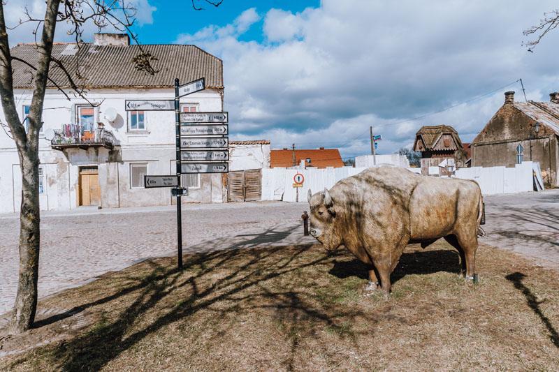 Pomnik Żubra to w Tykocinie atrakcja dla dzieci. Można zrobić sobie przy nim zdjęcie.