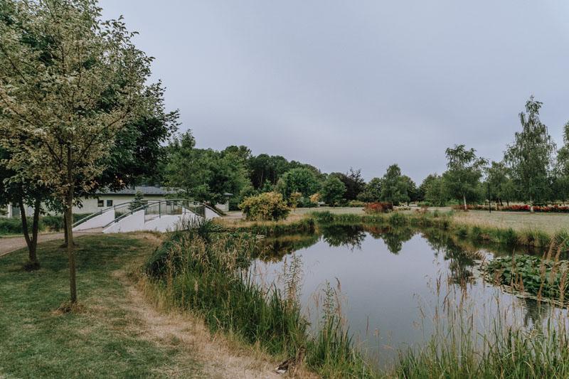 Busko-Zdrój ogród