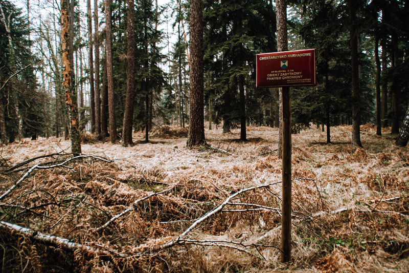 Las Kolanowski - groby kurhany