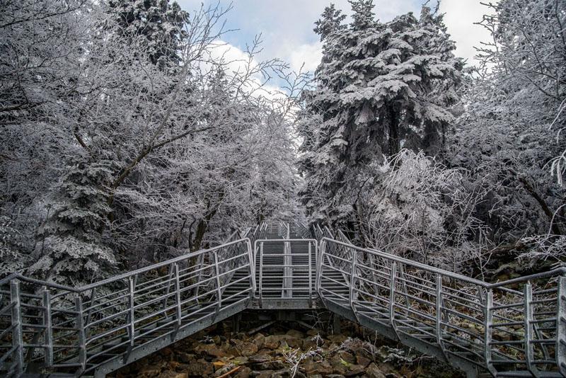 Platforma widokowa na gołoborze na Łysej Górze