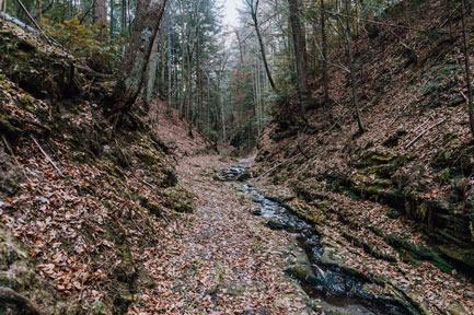 Jar Granicznik szlak zielony