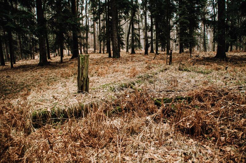 Las Kolanowski Bochnia - schrony i bunkry
