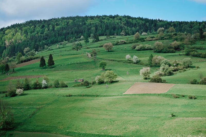 Rezerwat Lembarczek