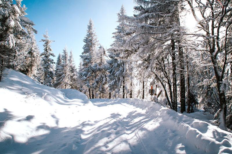 Zima Beskid Sądecki