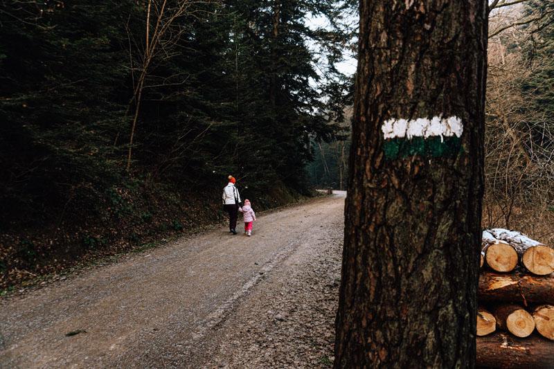 Ścieżka przyrodniczo-leśna Rdziostów