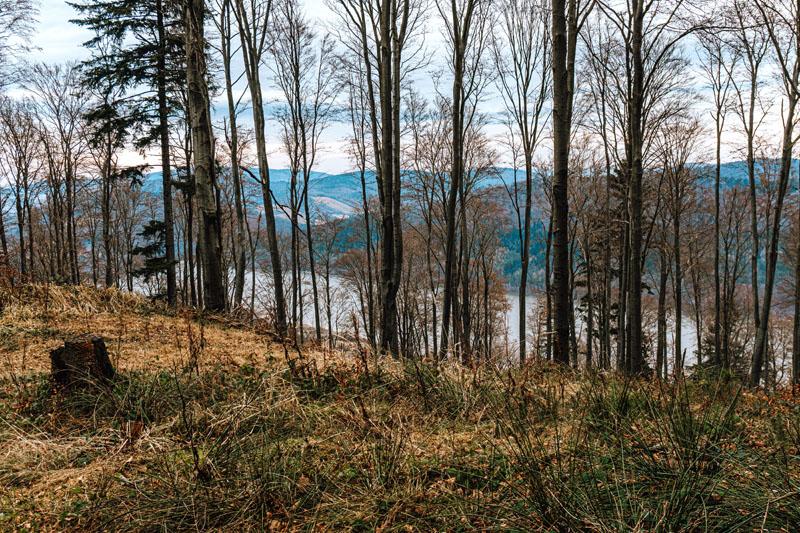 Widok na Jezioro Klimkowskie