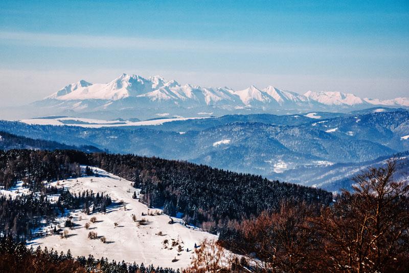 Widok na Tatry z Wierchomli
