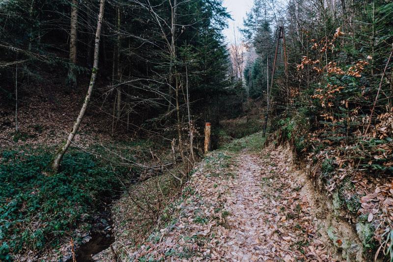 Trasa do Jaru Granicznika