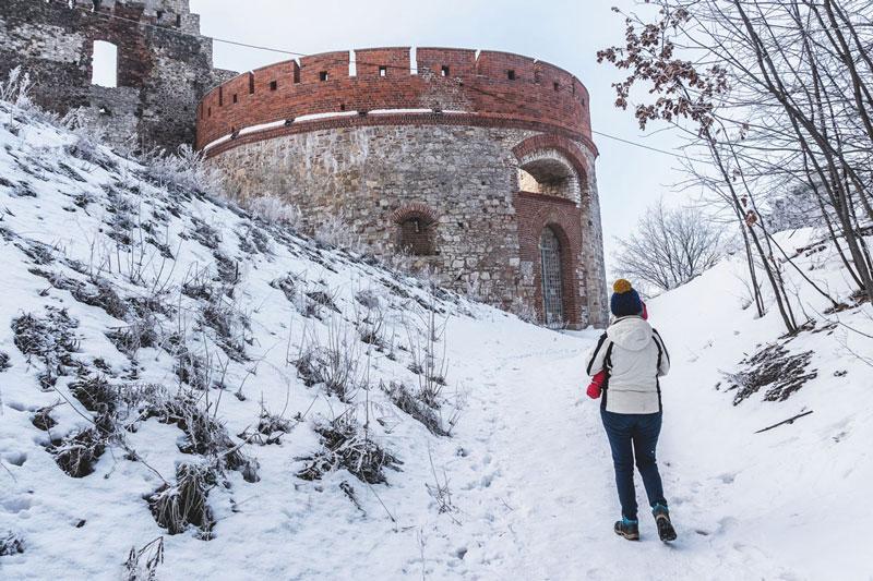 Zamek koło Krakowa