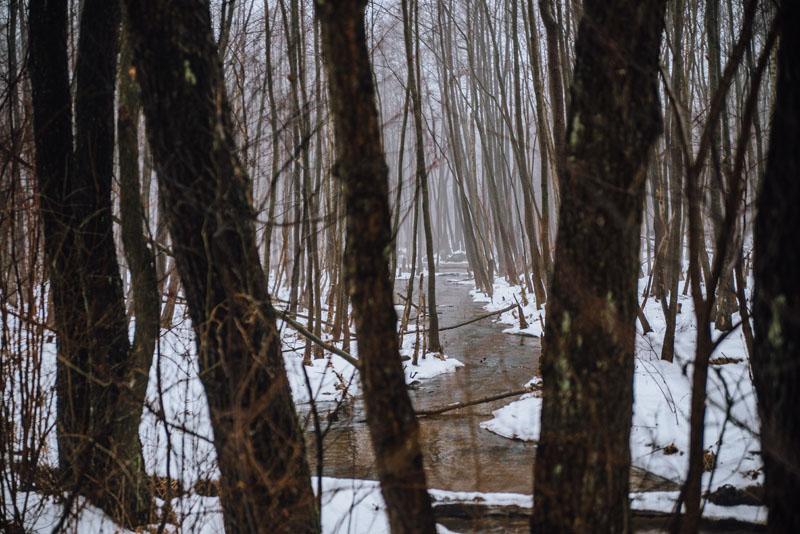 Biała Przemsza rzeka