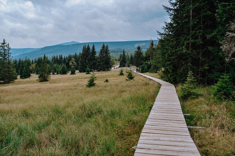Szlak na Pielgrzymy - Polana w Karkonoszach