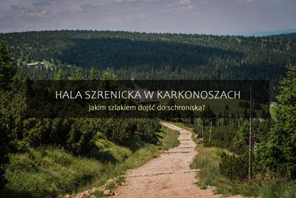 Hala Szrenicka szlaki