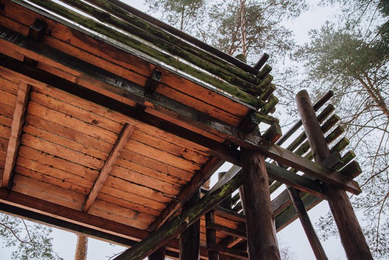 Platforma widokowa lasy błędowskie