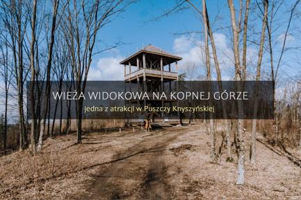 Puszcza Knyszyńska wieża widokowa