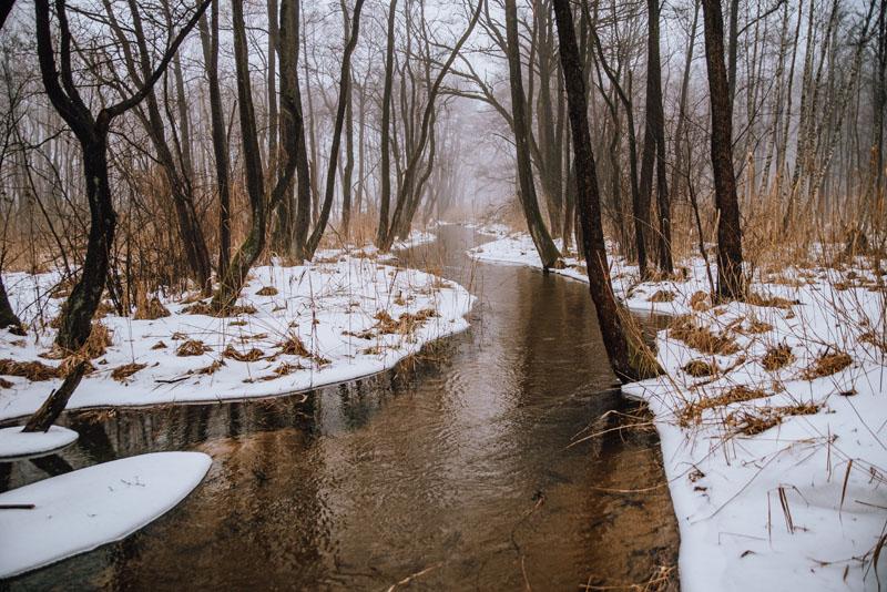 Rzeka Biała Przemsza