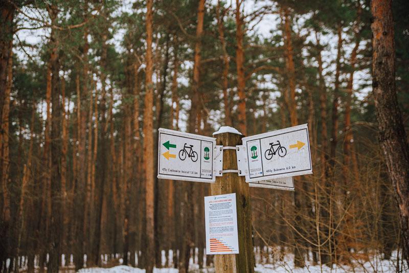 ścieżka rowerowa jaworzno