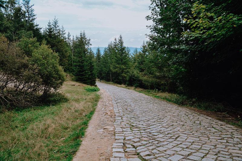 Szlak na Słonecznik i Pielgrzymy