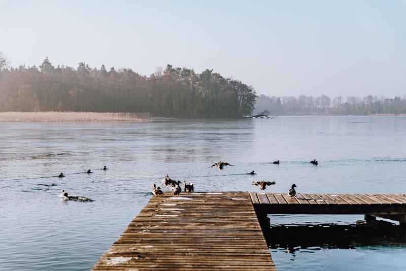 Jezioro Moryń zachodniopomorskie