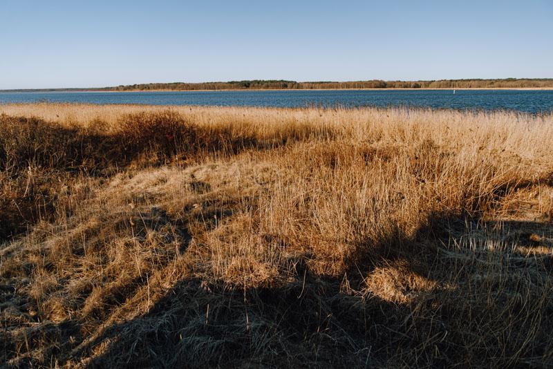 Jezioro nowe warpno