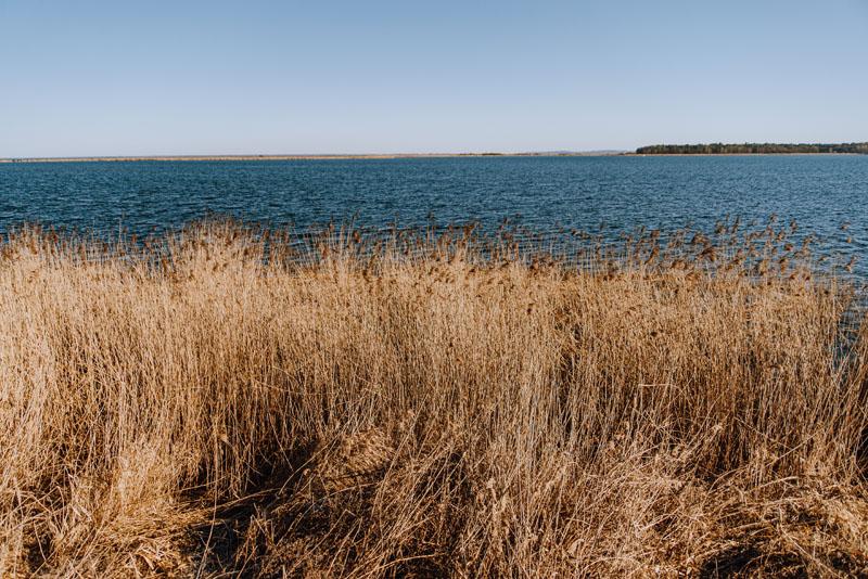 Jezioro Nowowarpieńskie