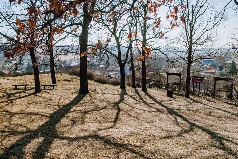 las-grodzisko-cedynia