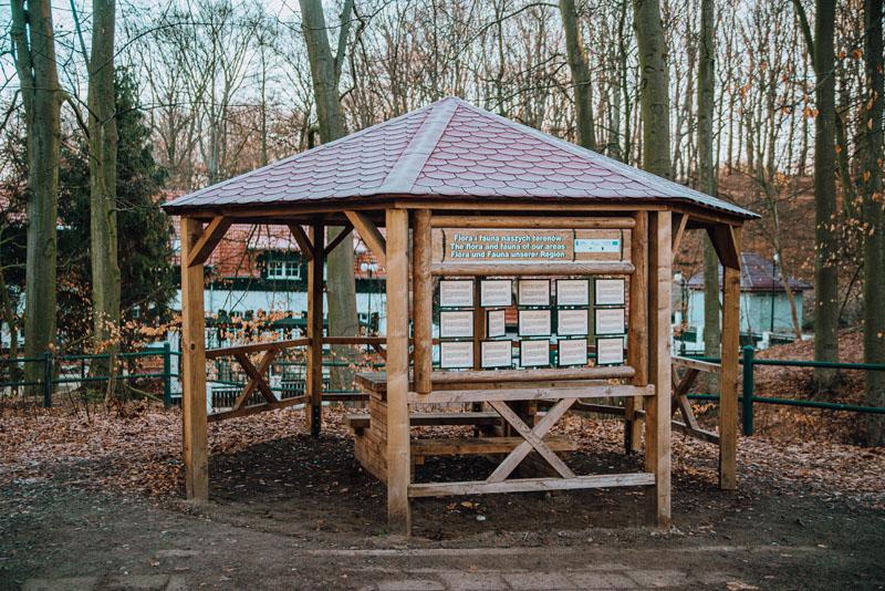 Park leśny zdroje szczecin