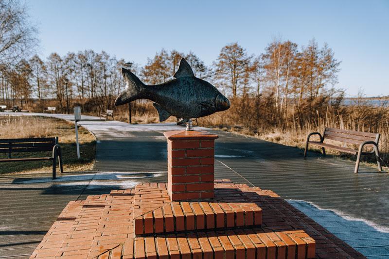 Pomnik ryby nowe warpno