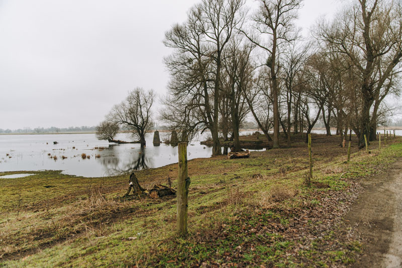 Czelin - park archeologiczny