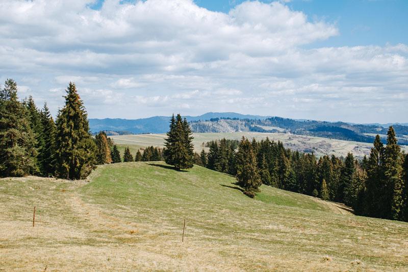 Powrót drogą rowerową do Łapsz Wyżnych przez Kuśnierzów Wierch