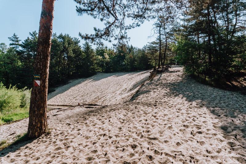 Szlak Doliny Sztoły