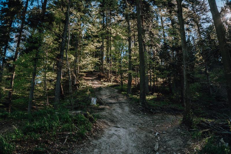 Opis szlaku i mapa trasy turystycznej na Orli Kamień z Sanoka