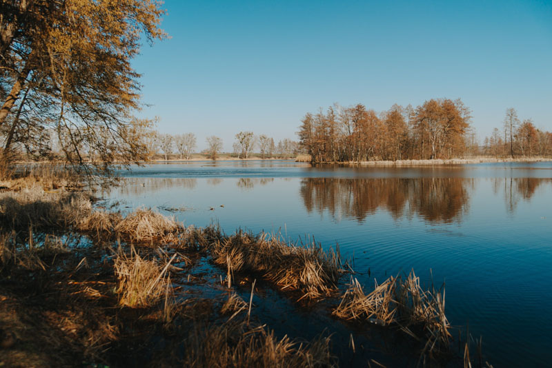 Jezioro Trzygłowskie (Jezioro Miejskie)