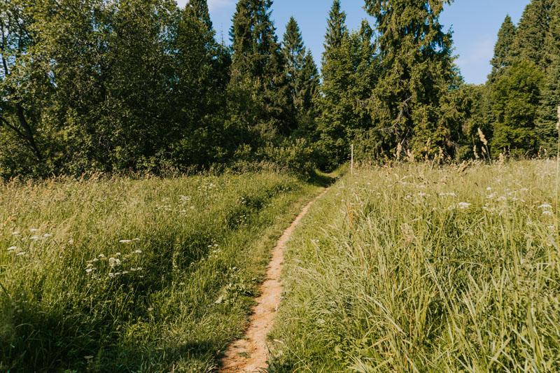 Punkt widokowy na Sianki i Przełęcz Użocką