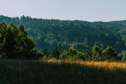 Jaworniki Góra