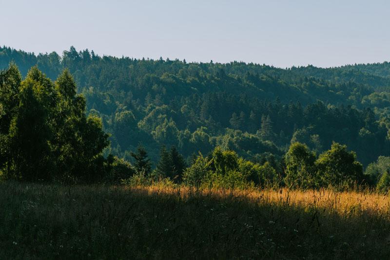 Jaworniki - najwyższy szczyt Gór Sanocko-Turczańskich po polskiej stronie