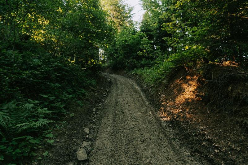 Opis szlaku na Jaworniki z Przełęczy nad Żłobkiem w Górach Sanocko-Turczańskich