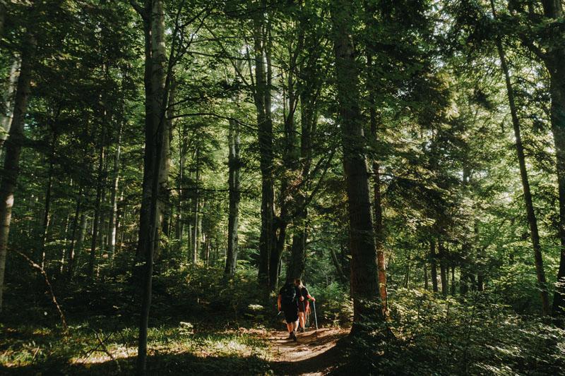 Trasa turystyczna do wieży widokowej w Mucznem z dzieckiem