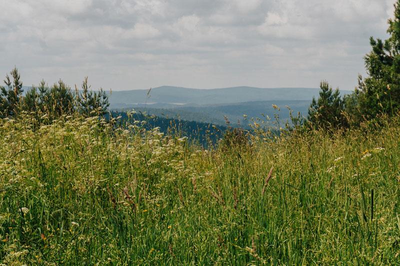 Przełęcz pod Suliłą 609 m n.p.m.