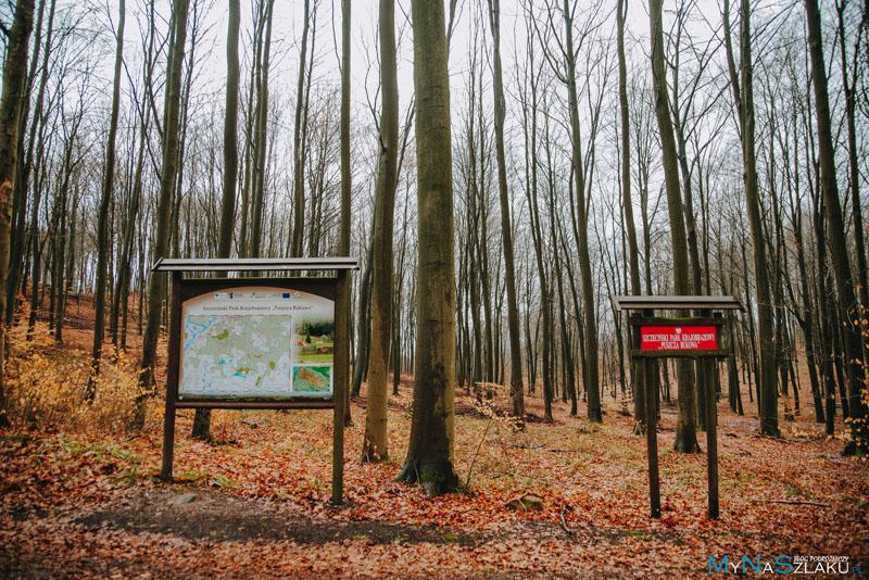 Szczeciński Park Krajobrazowy