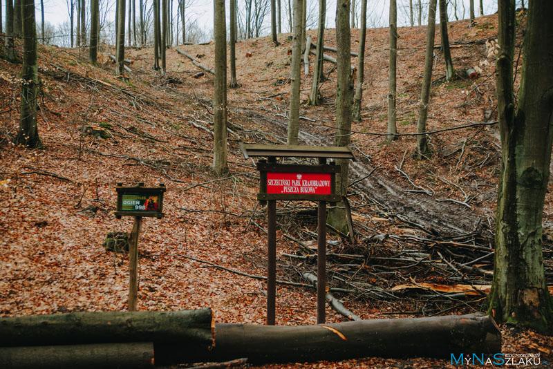 Rezerwaty przyrody na terenie parku
