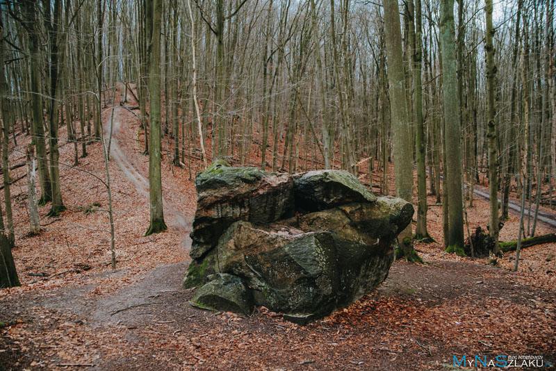Ciekawe pomniki przyrody - drzewa oraz głazy narzutowe
