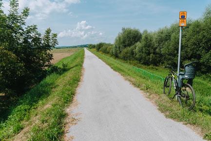 Velo Dunajec trasa