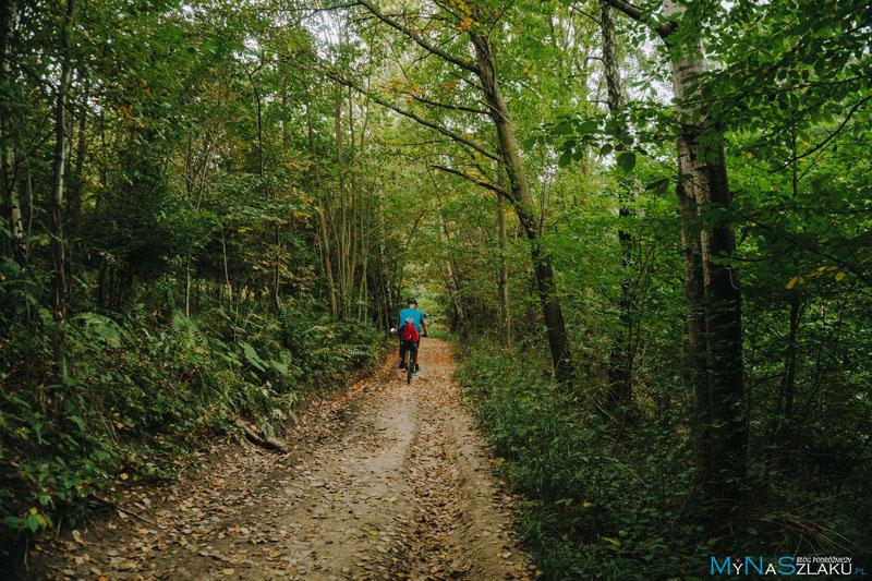Szlaki rowerowe Żywiec
