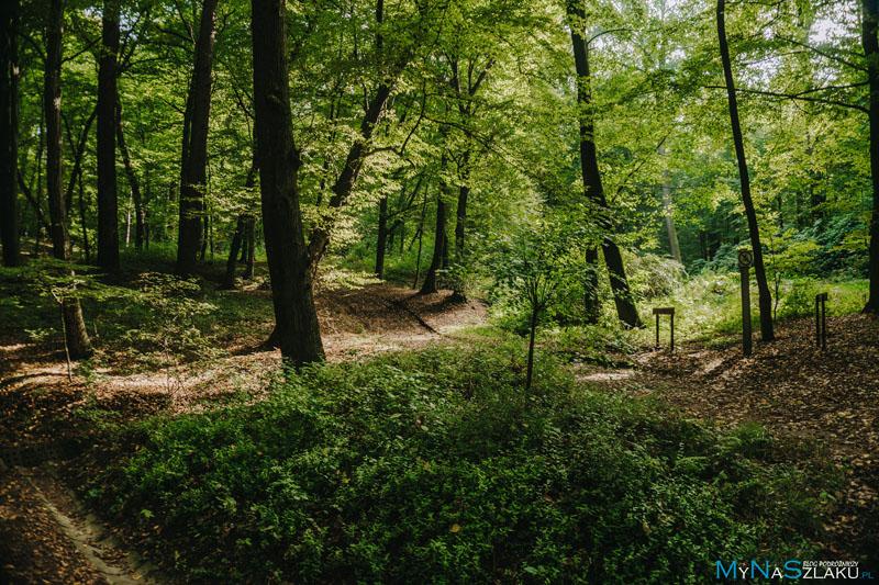 Ogród botaniczny w Raciborzu